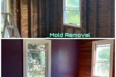 Mold-Removal-Before-and-After